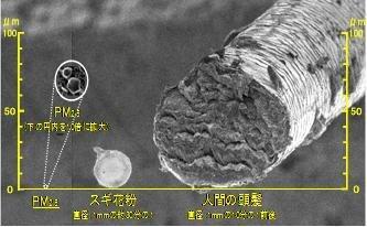 微小粒子状物質中