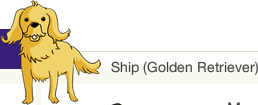 Ship (Golden Retriever)